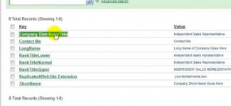 Customize Profile in MarketPowerPRO by MLM Software provider MultiSoft Corporation